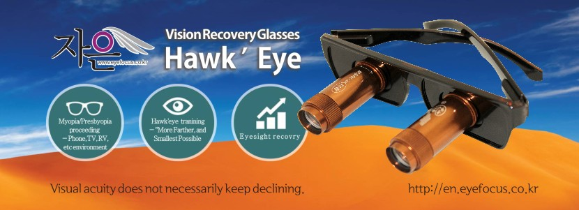 Eyesight Recovery Glasses -